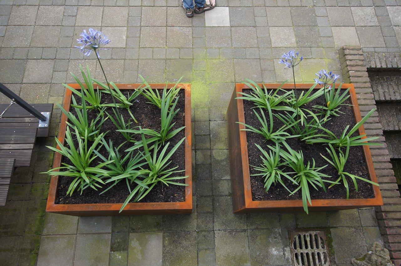 Brede achtertuin met strakke lijnen en stoere materialen