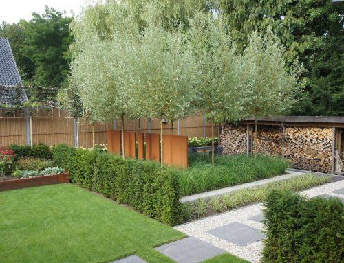 Brede achtertuin met strakke lijnen en stoere lijnen