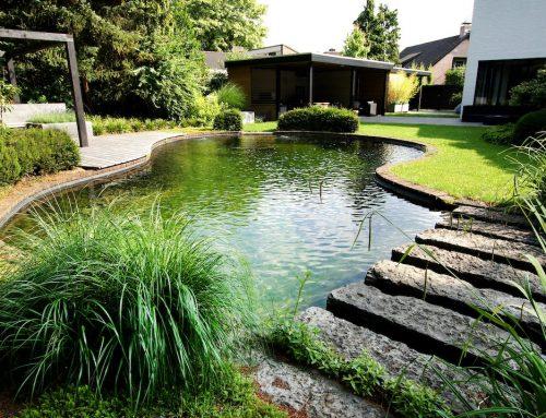 Royale achtertuin met zwemvijver en organische cortenstaal rand